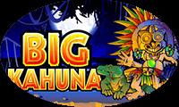 Big Kahuna азартные демо