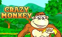 Crazy Monkey онлайн слот играть бесплатно и без регистрации в казино Вулкан