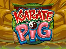 Получите выигрыш в игровом автомате Каратэ Кабан от Микрогейминг