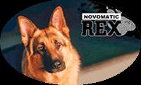 Rex играть демо